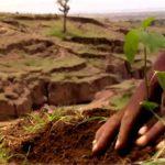 Compensatory Afforestation Fund Act | UPSC – IAS